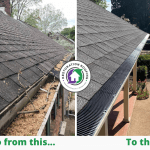 5 Reasons For Fall Roof and Gutter Cleaning