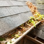 How To Prevent Clogged Gutters